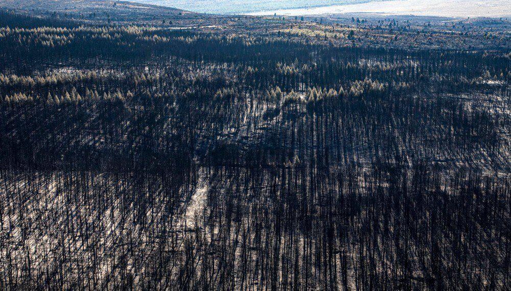 Continúan activos algunos incendios en Chubut y Río Negro.