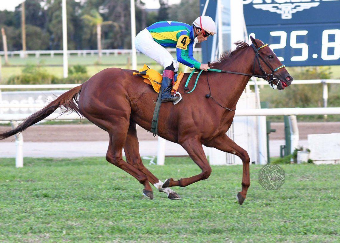 Huasanga sumó su tercer éxito en cuatro salidas a la pista