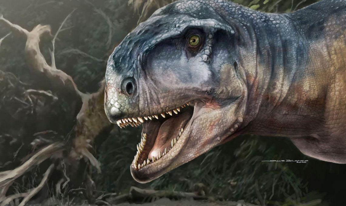 Patagonia: descubren una feroz nueva especie de dinosaurio