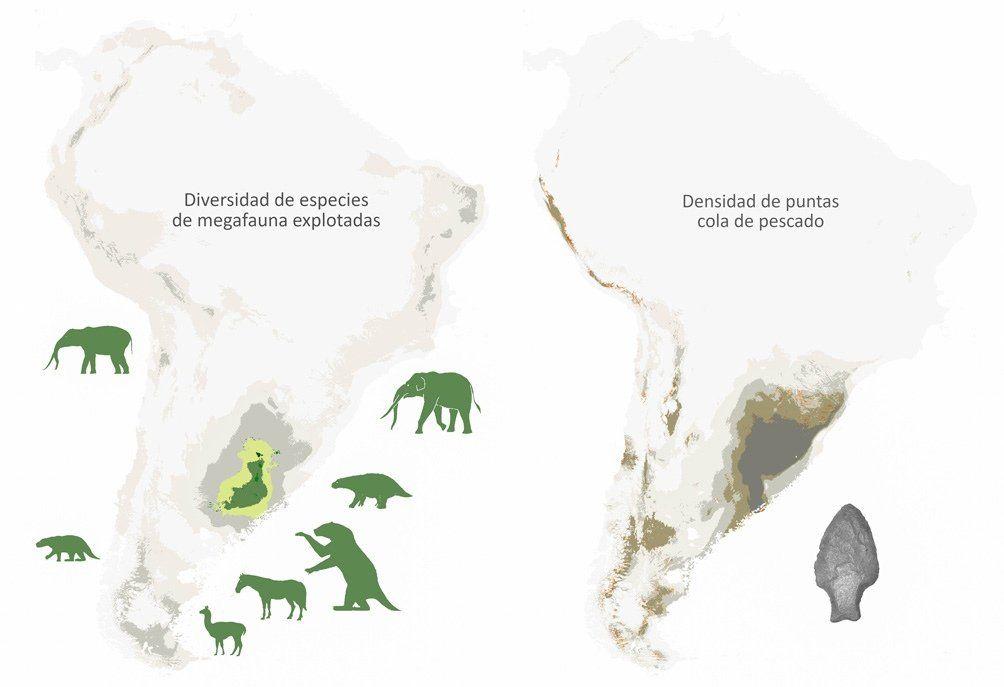Investigadores argentinos plantean que la megafauna se extinguió por la depredación humana