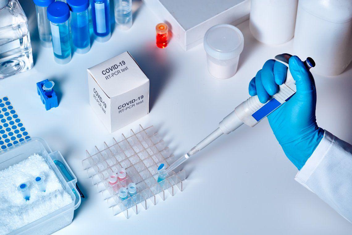 La recientemente formada Trebe Biotech utilizará larvas de insecto como biofábricas para la proteína.