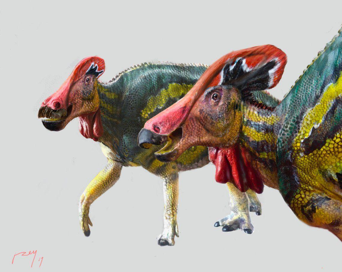 México: identifican nueva especie de dinosaurio charlatán