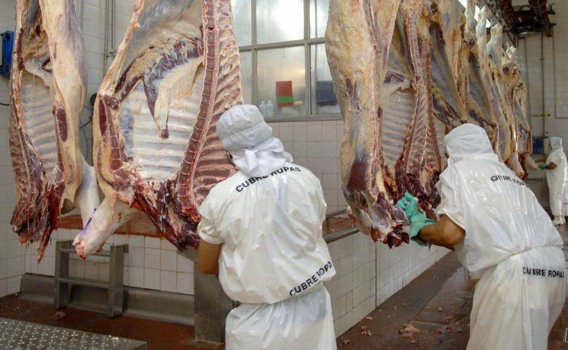 Las autoridades nacionales buscan garantizar el abastecimiento de carne y acomodar los precios con los que llegan al usuario.