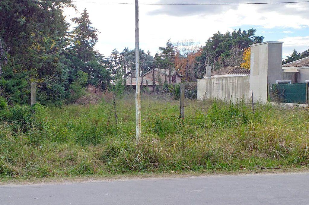 Se podrán expropiar terrenos o baldíos en desuso
