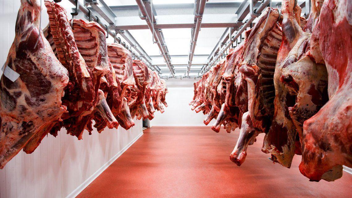 Alberto anuncia hoy la reapertura de las exportaciones de carne