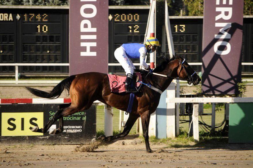 Tetaze ganó el premio Carlos Pellegrini al mejor caballo de 2020