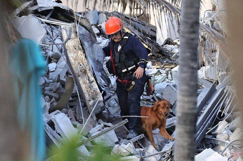 Un policía de rescate y su perro trabajan en el lugar del derrumbe buscando sobrevivientes. Foto: Miami Herald.