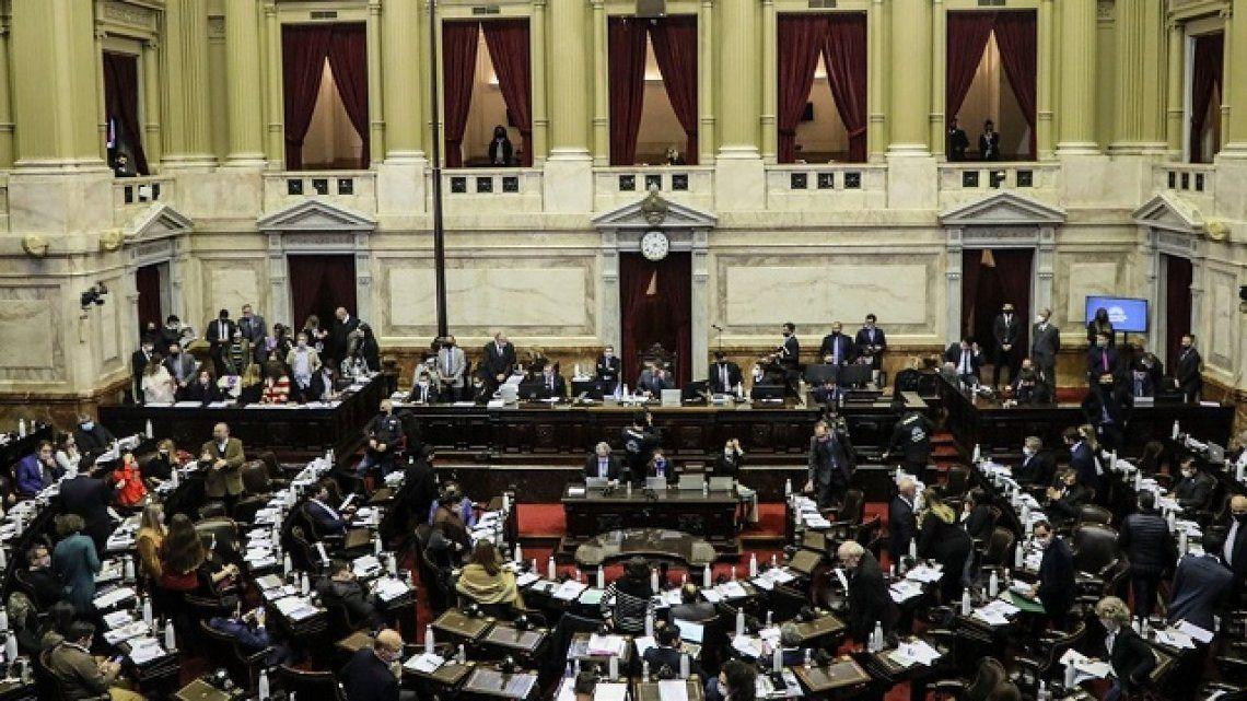 Cámara de Diputados: colocarán el primer cuadro de una mujer