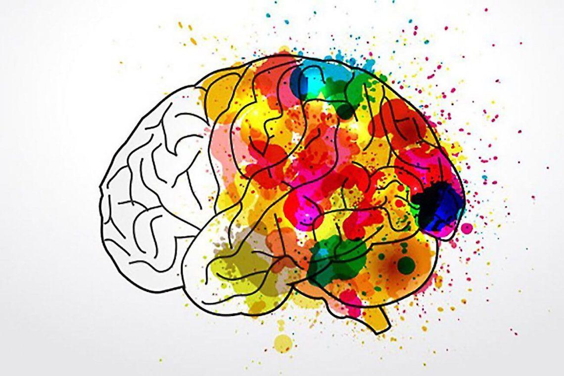 Día mundial del cerebro: ¿cómo cuidarlo?