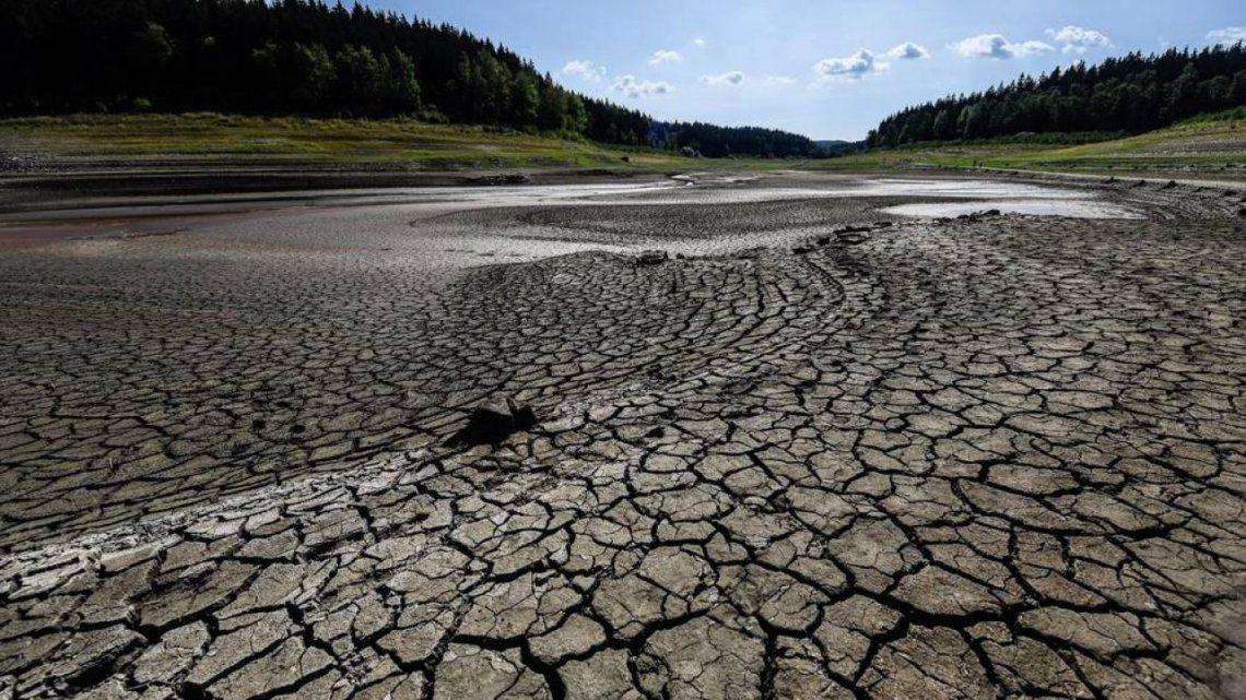 Las sequías son cada vez más frecuentes en diversas partes del mundo.