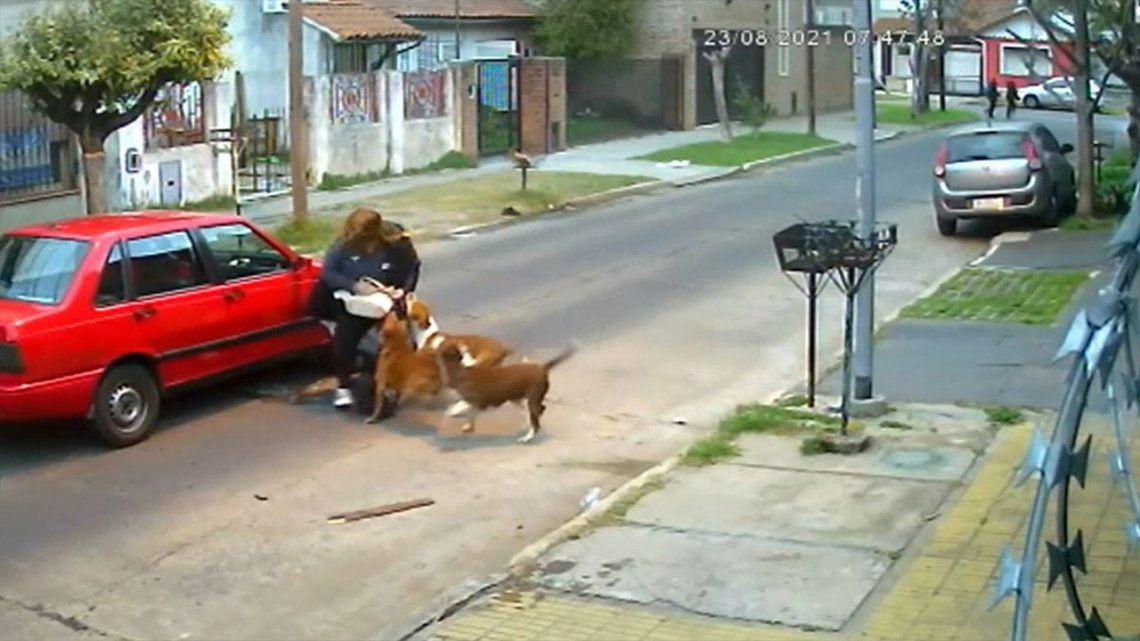 San Martín: tres perros atacaron a una mujer mientras volvía a su casa.