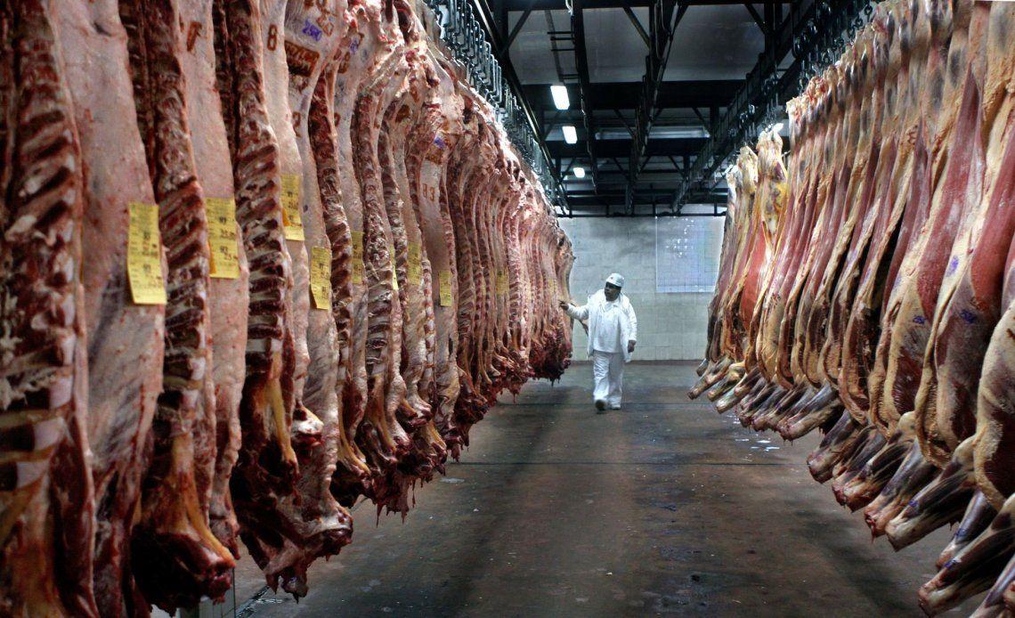 La limitación a la exportación de carne fue adoptada por el Gobierno a partir de las fuertes subas en el precio del producto a los consumidores.