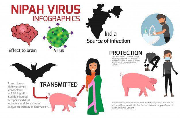 El virus Nipahse disemina en la India