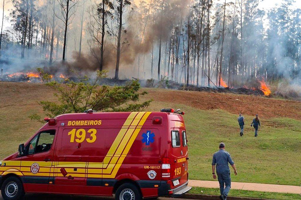 La aeronave se estrelló en una zona boscosa y se incendió