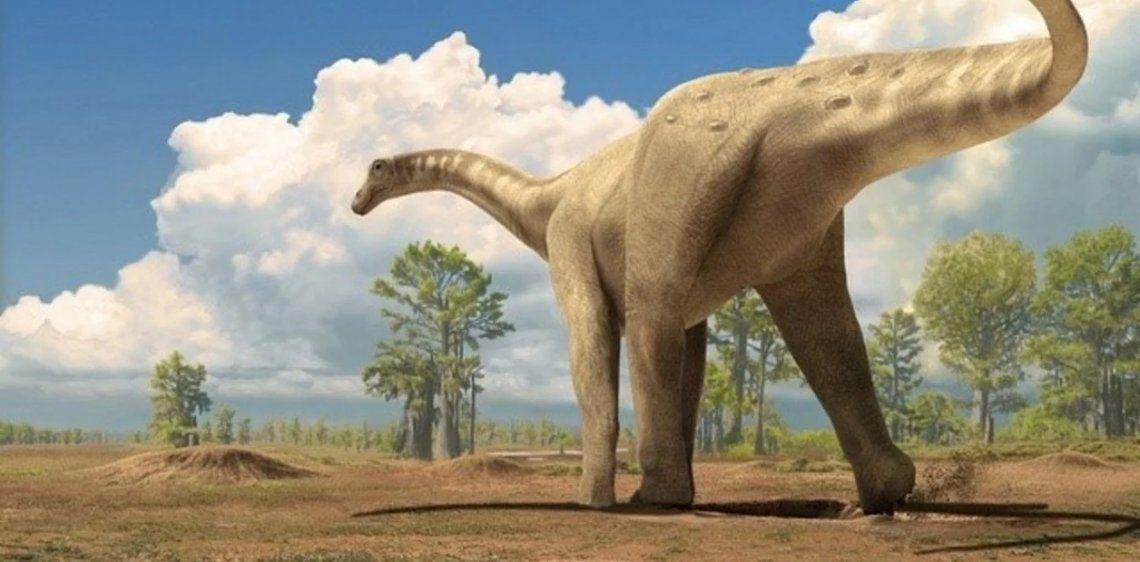 Titanosaurio saurópodo. Iluistración: ICP