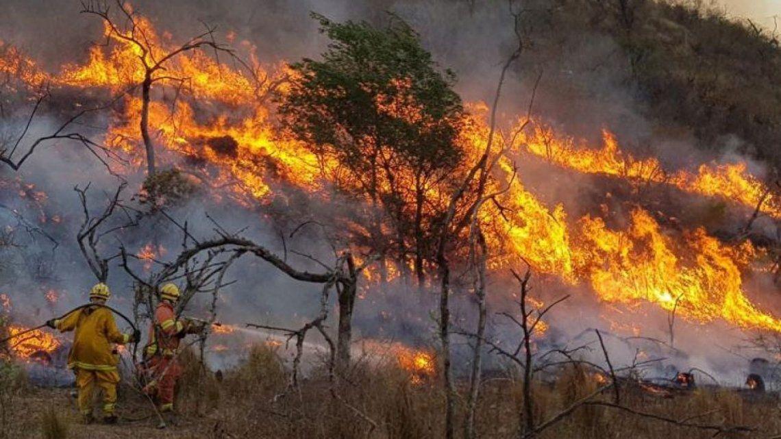 Los incendios en la Patagonia afectaron una vasta zona de la Comarca del paralelo 42.