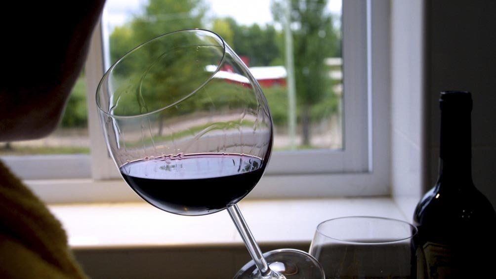 La Vendimia 2021, caracterizada por el clima fresco que garantizó una mejor sanidad y mayor acidez, permitirá la producción de excelentes vinos