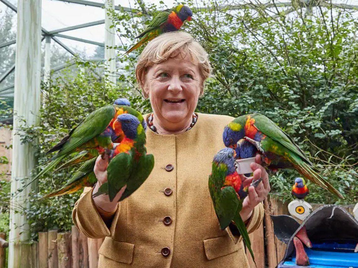 Angela Merkel finaliza su mandato rodeada de loros.