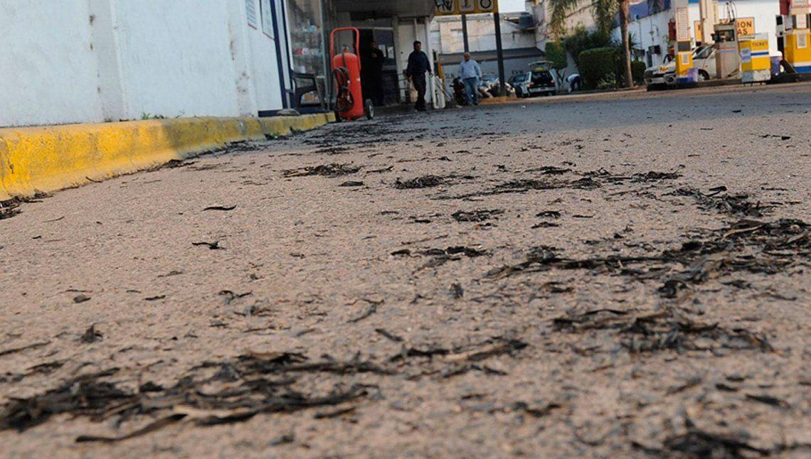 Lluvia de hollín, un problema que afecta a los tucumanos en esta época