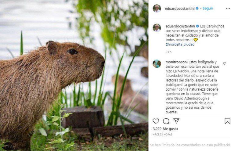 Eduardo Constantini defendió a los carpinchos en sus redes sociales.